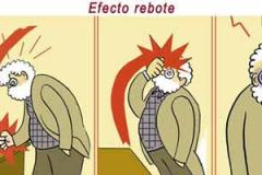 beiras_feijoo_web